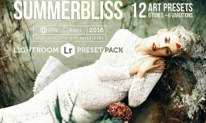 Summerbliss Lightroom Presets  773119
