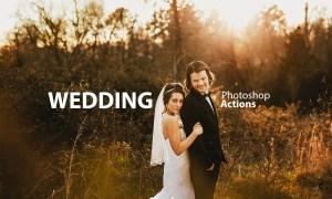 Wedding Actions Set 3622910