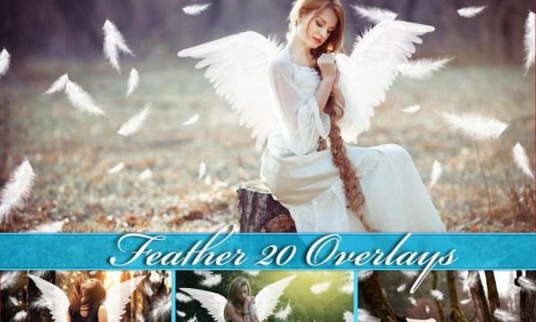 20 Feather Overlays