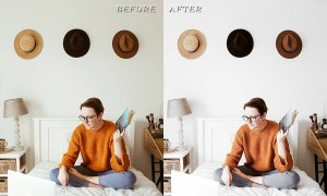 3 Desktop Lightroom Presets White 3748286