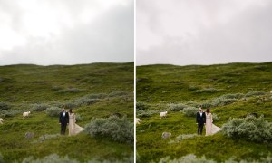 FILMSLOOKS | FEARLESS WEDDINGS 2086827