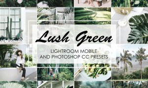 LUSH GREEN Lightroom Presets 3699522