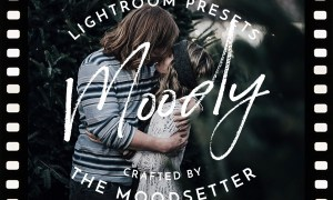 Moody Fine art Lightroom Presets 2394698