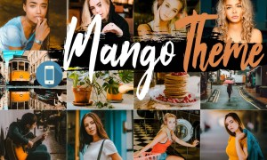 Neo Mango Theme Mobile Lightroom Presets