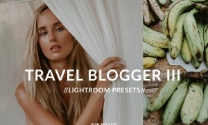 TRAVEL BLOGGER FADED GREENS PRESETS 2442882