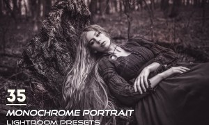 35 Monochrome Portrait Lightroom Presets 3844398