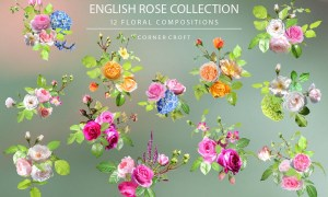 English Rose Collection - JPG, PNG
