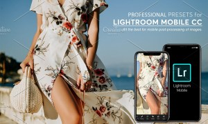 Lightroom Mobile Presets 3769345