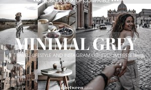 Minimal Grey Lightroom Mobile Preset 3836032