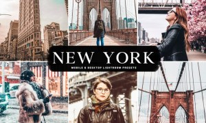 New York Mobile & Desktop Lightroom Presets