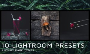 10 Dark tones presets for Lightroom 2172224