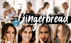 5 Gingerbread Mobile Lightroom Presets