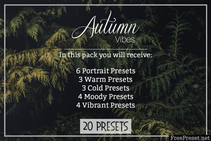 Autumn Vibes - Lightroom Presets 1957277