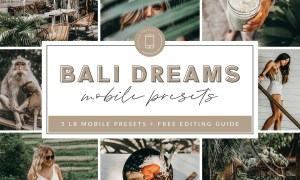 Bali Lightroom MOBILE Presets 3908640