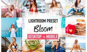 BLOOM Lightroom Presets 3826060
