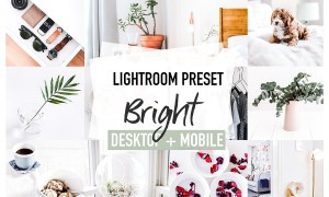 BRIGHT 4 Lightroom Presets 3826448
