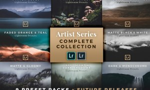 Complete Artist Series for Lightroom 2021627