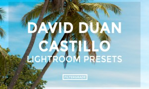 David Duan Castillo Lightroom Presets