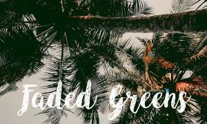 FADED GREENS FILM CAMERA PRESET 2083884