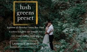 JAYDE & UMBER Photography - Lush Greens LR & ACR Presets