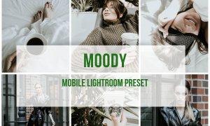 Lightroom Mobile Preset Moody 3908487