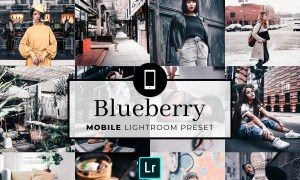 Mobile Lightroom Preset Blueberry 3321762