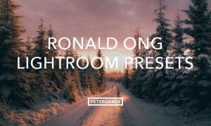 Ronald Ong Lightroom Presets