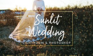 Sunlit Wedding Presets LR & PS 1344250