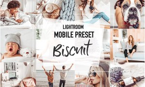 BISCUIT 4 Mobile Lightroom Presets 3956972