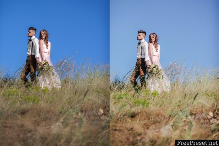 Clear Film Wedding Presets 1299962