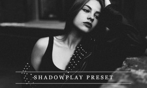 Shadowplay - Lightroom preset 1237373