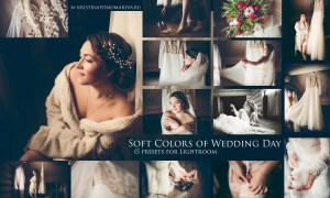 Soft Colors of Wedding - 15 Presets 1149630