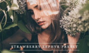 Strawberry zephyr - Lightroom preset 1237374