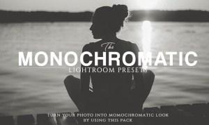 The Monochromatic Lightroom Presets 1211304