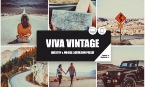 Viva Vintage Lightroom Preset 3977625