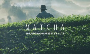 50 Matcha Lightroom Presets and LUTs