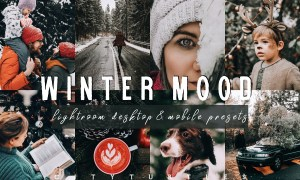 Moody WINTER MOOD Lightroom Presets 4284060