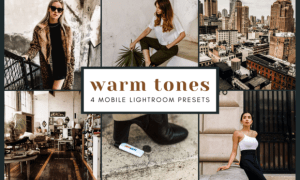 4 Mobile Lightroom Presets | Warm Tones 2473083
