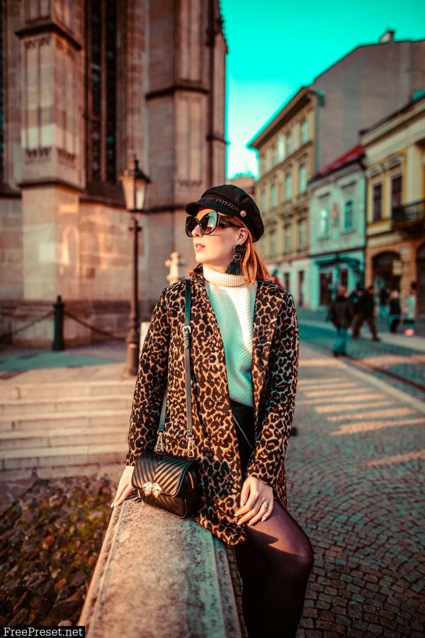 24 Pro Blogger Presets 25591496