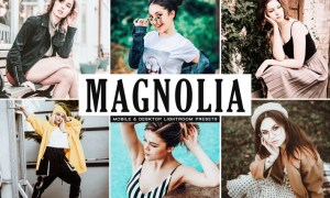 Magnolia Mobile & Desktop Lightroom Presets