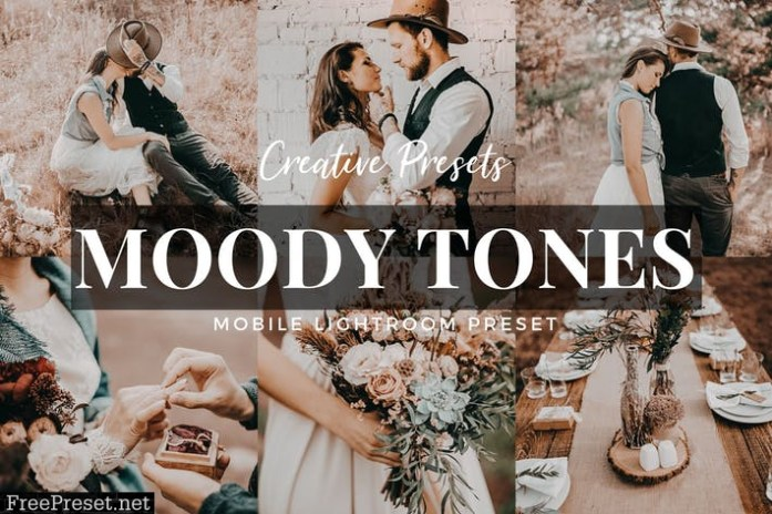 Moody Tones Mobile Lightroom Preset