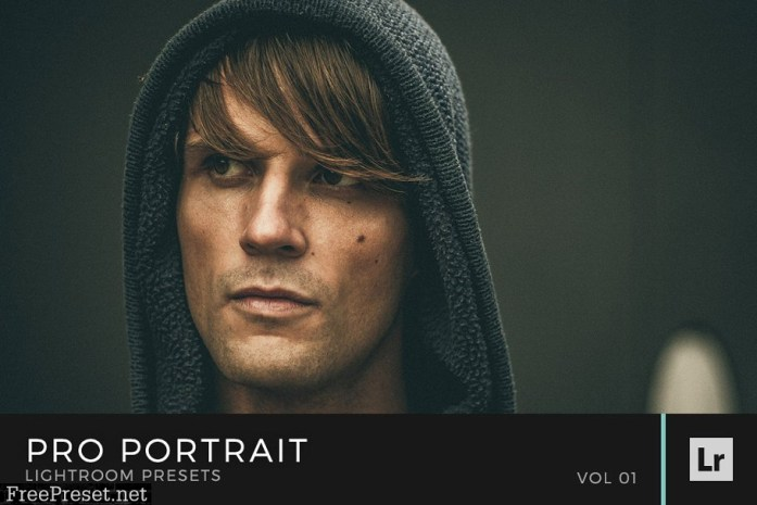 Pro Portrait Lightroom Preset Bundle 1344384