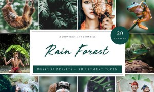 Rain Forest // Desktop Presets 4594872