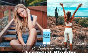 16 Blogger Mobile Lightroom Presets 4532450