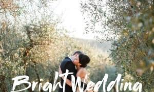 Bright Wedding - Lightroom Preset 4633976