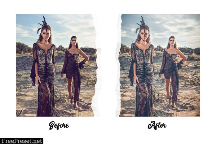 Fashion Lightroom Presets Vol. 1