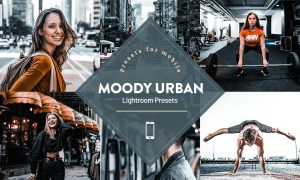 Moody Urban Lightroom Presets 4593840