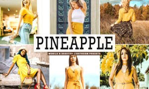 Pineapple Lightroom Presets Pack 3629223