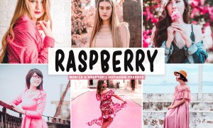 Raspberry Pro Lightroom Presets 4667170