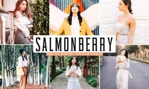 Salmonberry Mobile & Desktop Lightroom Presets